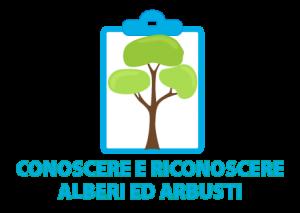Alberti ed arbusti